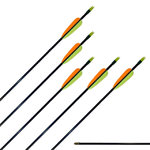 Carbon Fibre Arrows (X12)
